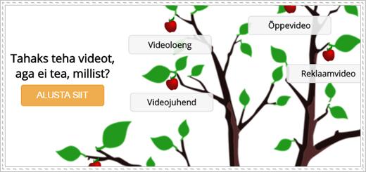 videopuu4-pisipilt
